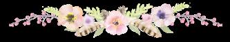 transparent-divider-flower-4